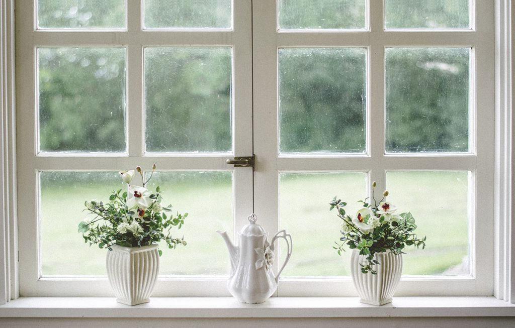 two plants sitting on a window sill